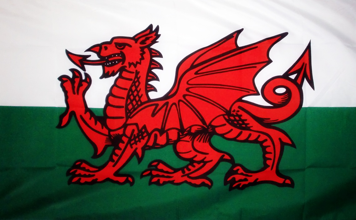 wales-dragon-18-x-12-flag-3595-p.jpg