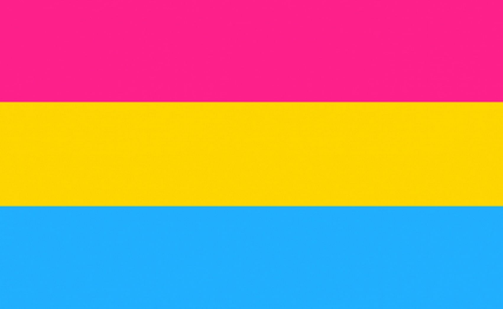 Panssexual flag